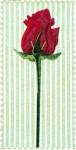 rosebudclass
